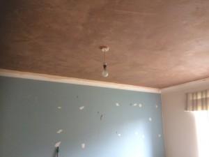 Plastering Blandford
